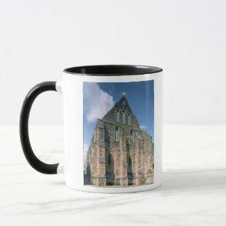 View of the ruins mug