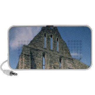 View of the ruins travel speaker