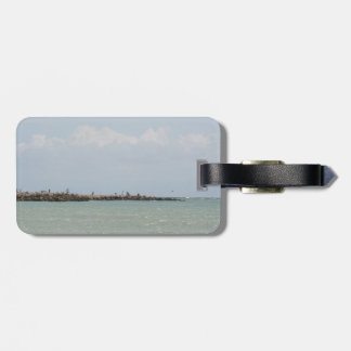 View of the South Jetty Inlet Bag Tag