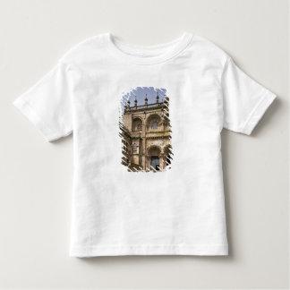 View of the south transept portal  begun c.1100 toddler t-shirt