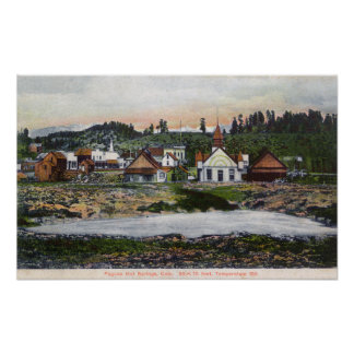 View of the Springs and Town Print