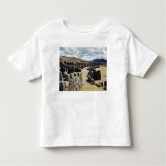 View of the stone walls toddler t-shirt
