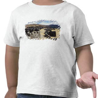View of the stone walls t shirts