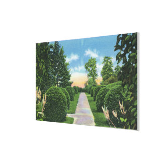 View of the Tanglewood Gardens # 2 Canvas Print