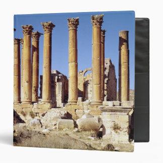 View of the Temple of Artemis, built c.386 AD Binders