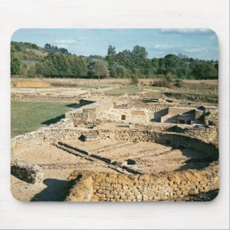 View of the thermal baths mousepad