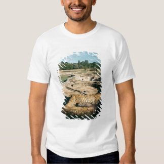 View of the thermal baths T-Shirt