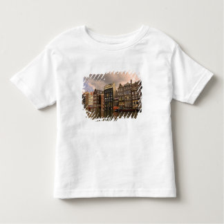 View of the unique architecture and gabled toddler t-shirt