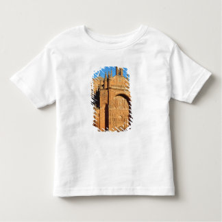 View of the West Front Toddler T-shirt
