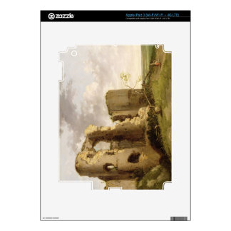 View of the West Gate of Pevensey Castle, Sussex, iPad 3 Skins