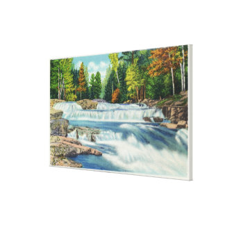 View of the Wild Cat River and Jackson Falls Canvas Print