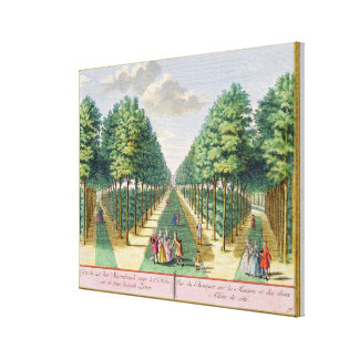 View of the wood to the house and the two side ave canvas print