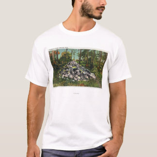 View of Thoreau's Cairn T-Shirt