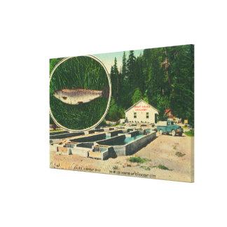 View of Trout Haven HatcheryGasquet CA Canvas Print