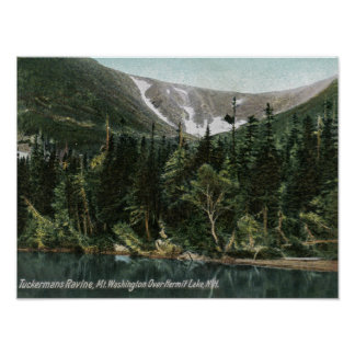 View of Tuckermans Ravine Mt Washington Print