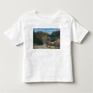 View of Tuckermans Ravine Tee Shirt