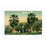View of Twin PalmsParaiso Springs, CA Postcard