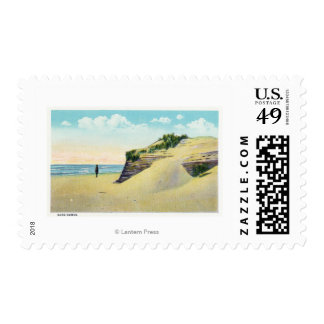 View of Typical New England Sand Dunes Postage
