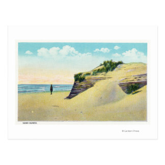 View of Typical New England Sand Dunes Postcard