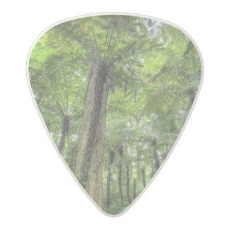 View of vegetation in Bali Botanical Gardens, Acetal Guitar Pick