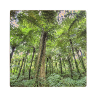 View of vegetation in Bali Botanical Gardens, Maple Wood Coaster