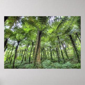 View of vegetation in Bali Botanical Gardens, Poster