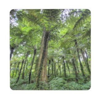View of vegetation in Bali Botanical Gardens, Puzzle Coaster