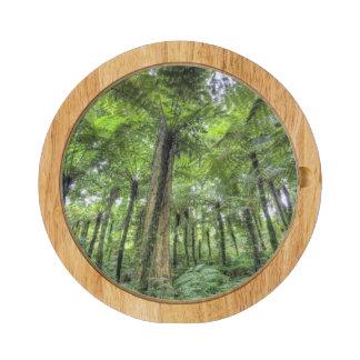 View of vegetation in Bali Botanical Gardens, Round Cheese Board