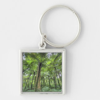 View of vegetation in Bali Botanical Gardens, Silver-Colored Square Keychain