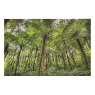 View of vegetation in Bali Botanical Gardens, Wood Wall Art