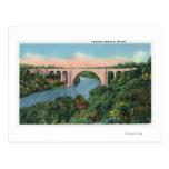 View of Veterans Memorial Bridge Postcard
