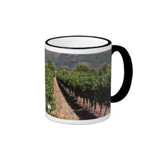 View Of Vineyards. Stellenbosch Mugs