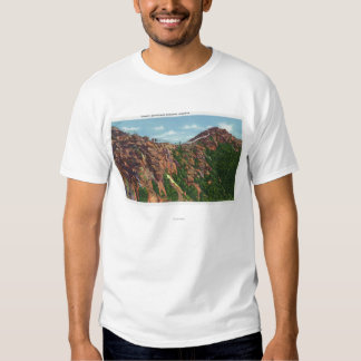 View of Whiteface Mt Summit T Shirt