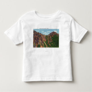 View of Whiteface Mt Summit Tshirt