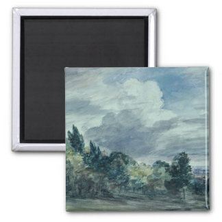 View over a wide landscape, with trees in the fore 2 inch square magnet