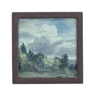 View over a wide landscape, with trees in the fore keepsake box