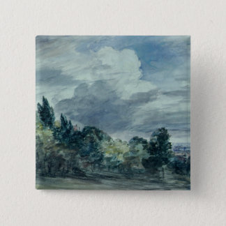 View over a wide landscape, with trees in the fore pinback button