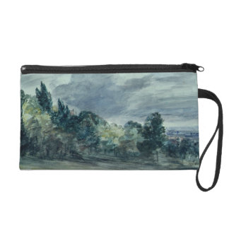 View over a wide landscape, with trees in the fore wristlet