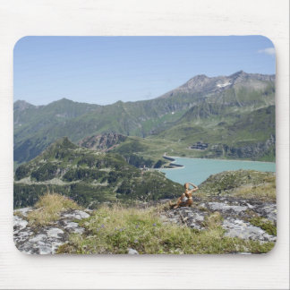 View Over Tauernmoossee Mouse Pad