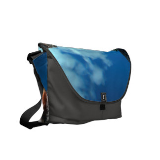 View over the ocean to the rocks with waterfall courier bags