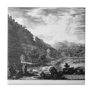 View the remains of the Praetorian Castro at Villa Tile