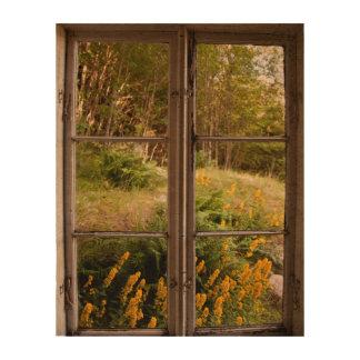 View through old window queork photo print