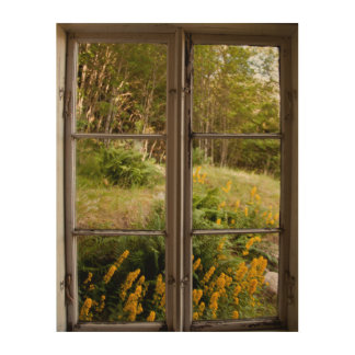 View through old window wood canvas