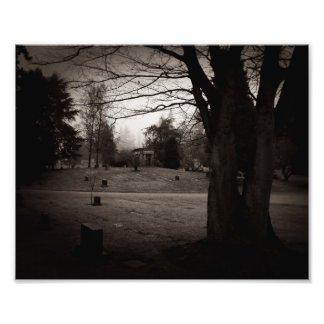 View Through the Graveyard Photo Print