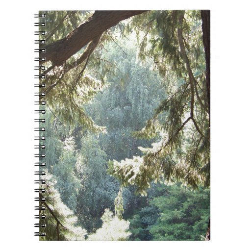 View Through the Trees Note Books