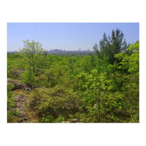 View to Boston from Middlesex Fells Rock Circuit Postcard