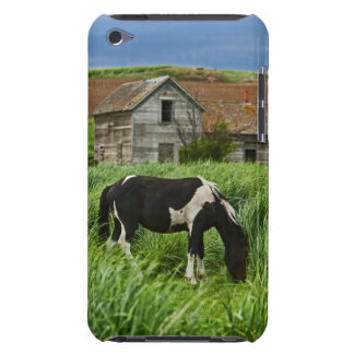 Viewing horses in a field in the Palouse 2 Barely There iPod Cover