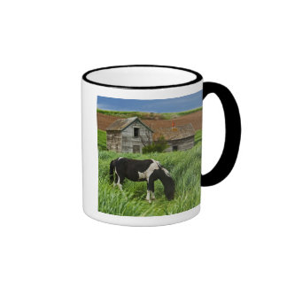Viewing horses in a field in the Palouse 2 Coffee Mugs