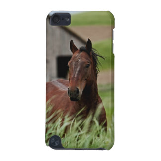 Viewing horses in a field in the Palouse iPod Touch 5G Case