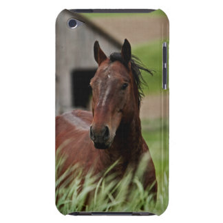Viewing horses in a field in the Palouse iPod Touch Case-Mate Case